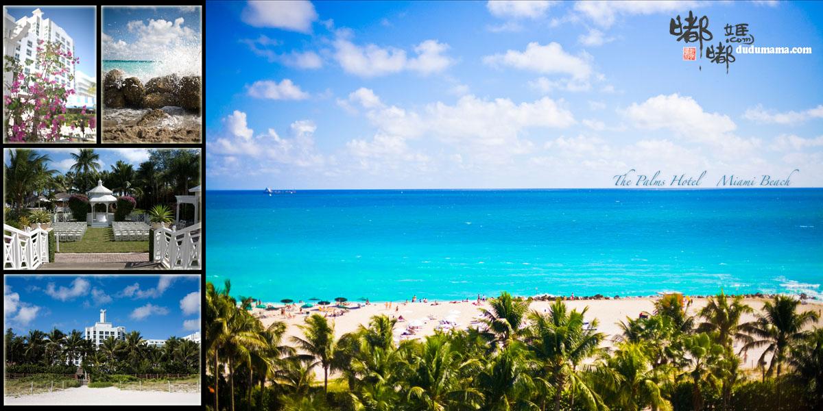 婚礼地点:The Palms Hotel - Miami Beach